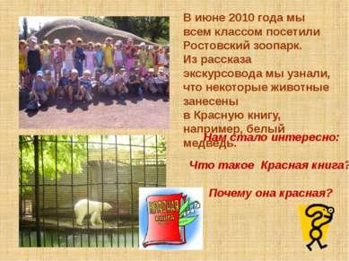 В июне 2010 года мы всем классом посетили Ростовский зоопарк. Из рассказа экс...
