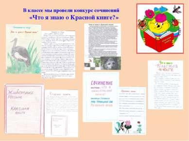 В классе мы провели конкурс сочинений «Что я знаю о Красной книге?»
