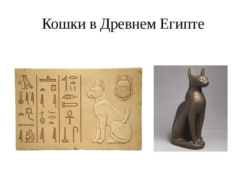 Кошки в Древнем Египте