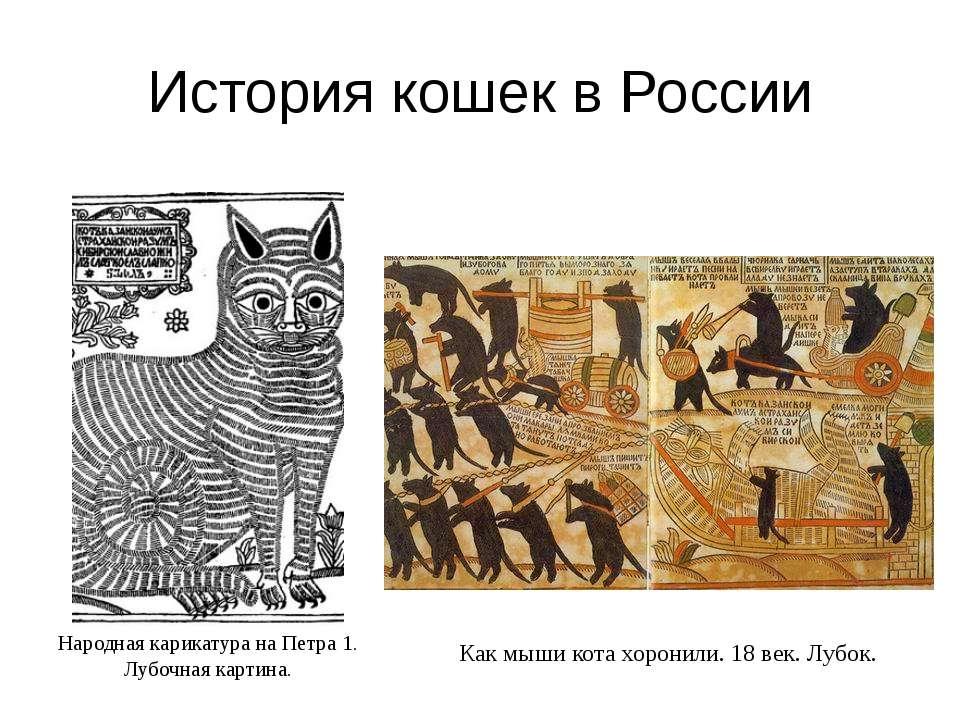 История кошек в России Народная карикатура на Петра 1. Лубочная картина. Как ...