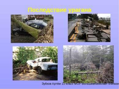 Последствие урагана Зубков Артём 11 класс МОУ Большевязёмская гимназия