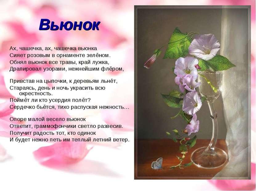 Вьюнок Ах, чашечка, ах, чашечка вьюнка Сияет розовым в орнаменте зелёном. Обн...