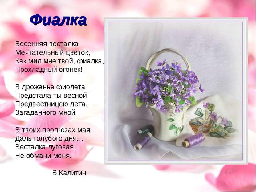 Фиалка Весенняя весталка Мечтательный цветок, Как мил мне твой, фиалка, Прохл...
