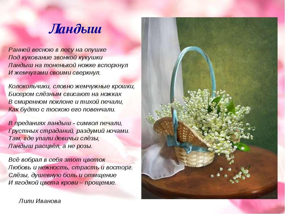 Ландыш Ранней весною в лесу на опушке Под кукование звонкой кукушки Ландыш на...