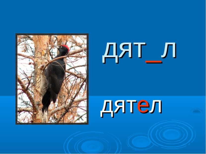 дят_л дятел