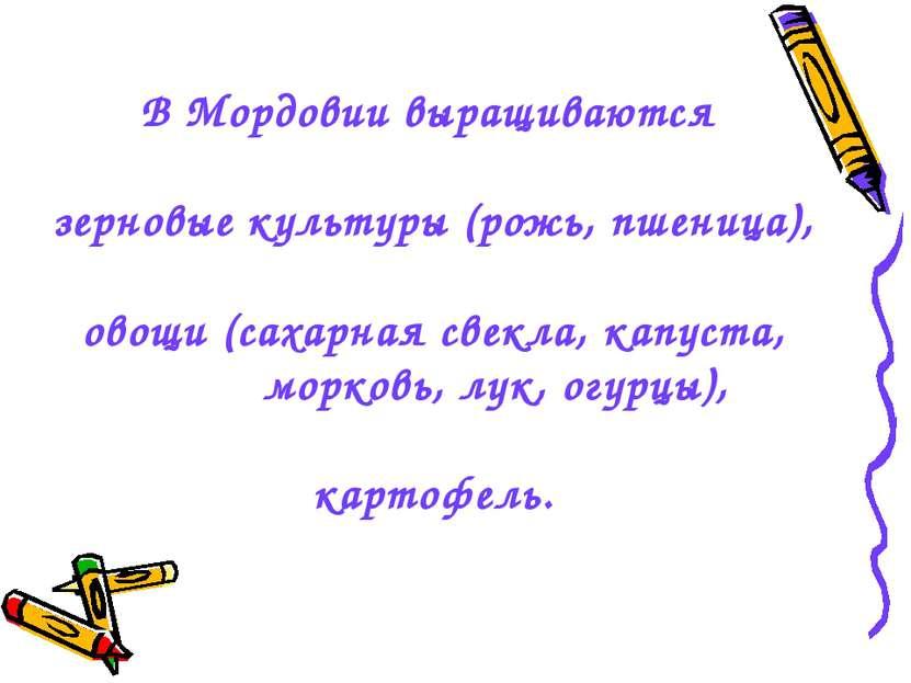 В Мордовии выращиваются зерновые культуры (рожь, пшеница), овощи (сахарная св...