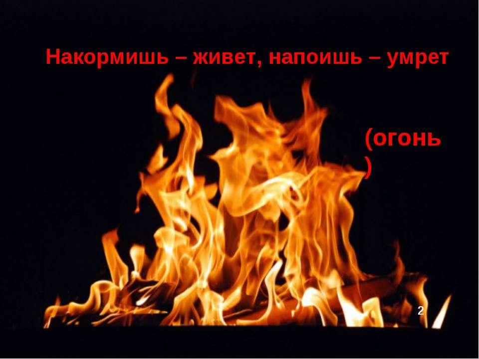Накормишь – живет, напоишь – умрет (огонь) 2