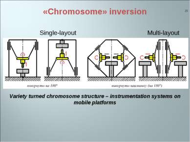 «Chromosome» inversion * Single-layout Variety turned chromosome structure – ...