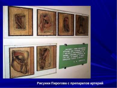 Рисунки Пирогова с препаратов артерий