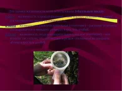 Для оценки жизненности мхов использовали 3-балльную шкалу: 1 балл – жизненнос...