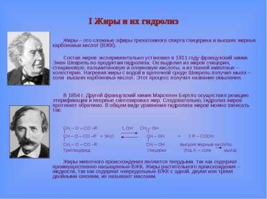 I Жиры и их гидролиз Жиры – это сложные эфиры трехатомного спирта глицерина и...