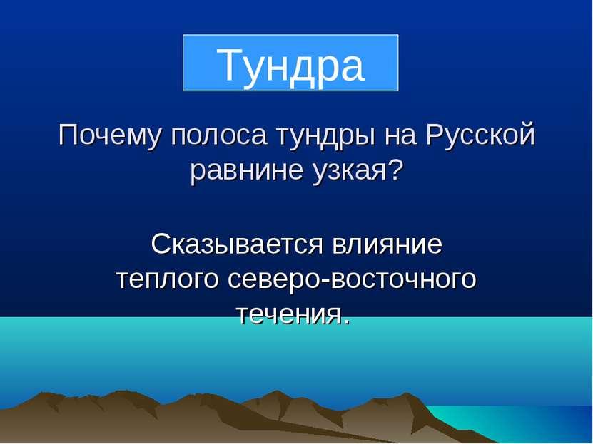 Почему полоса тундры на Русской равнине узкая? Сказывается влияние теплого се...