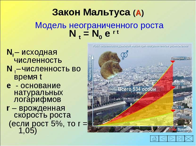Закон Мальтуса (А) Модель неограниченного роста N0 – исходная численность N t...