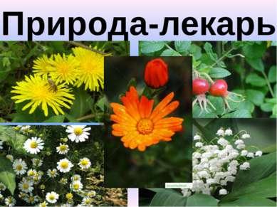 «Природа-лекарь»