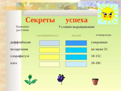 Секреты успеха Название растения Условия выращивания освещенность полив темпе...