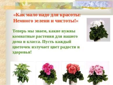 «Как мало надо для красоты: Немного зелени и чистоты!» Теперь мы знаем, какие...