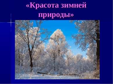 «Красота зимней природы»