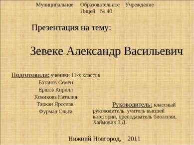 Зевеке Александр Васильевич Презентация на тему: Муниципальное Образовательно...