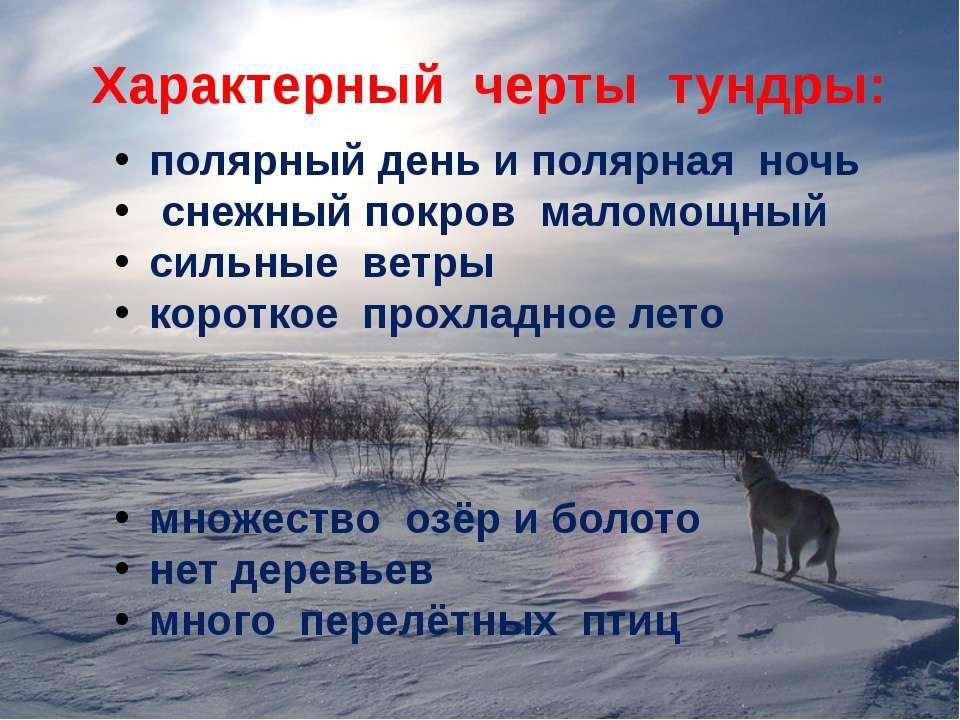 Характерный черты тундры: полярный день и полярная ночь снежный покров маломо...