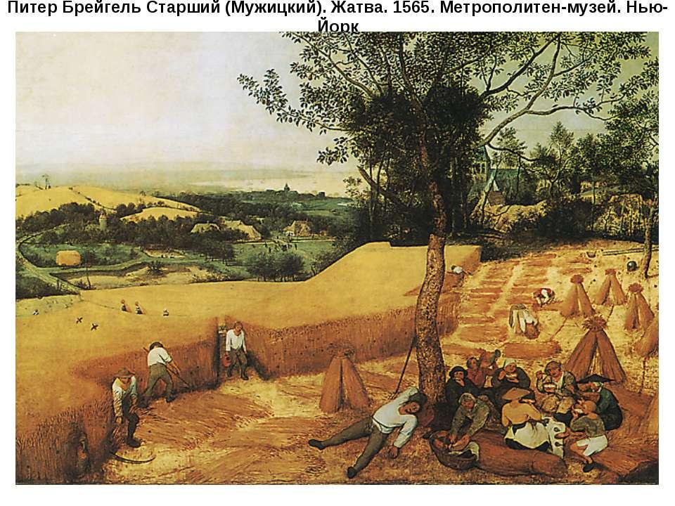 Питер Брейгель Старший (Мужицкий). Жатва. 1565. Метрополитен-музей. Нью-Йорк
