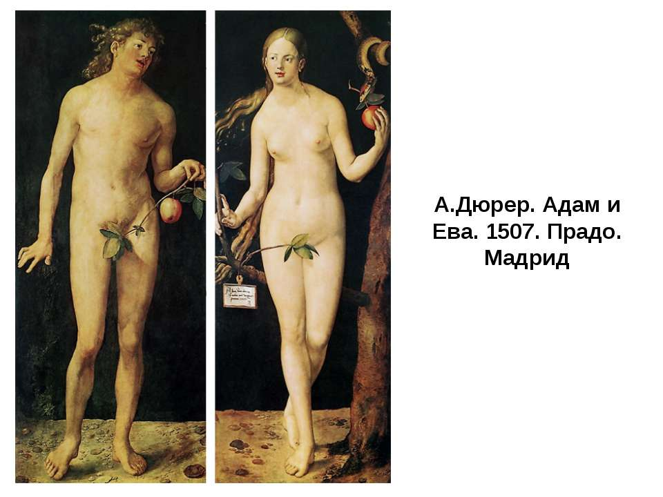 А.Дюрер. Адам и Ева. 1507. Прадо. Мадрид