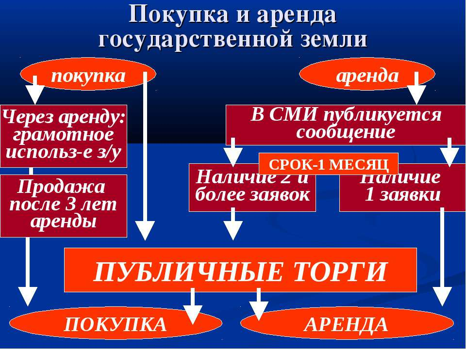 Покупка и аренда государственной земли покупка аренда Через аренду: грамотное...