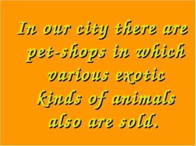In our city there are pet-shops in which various exotic kinds of animals also...