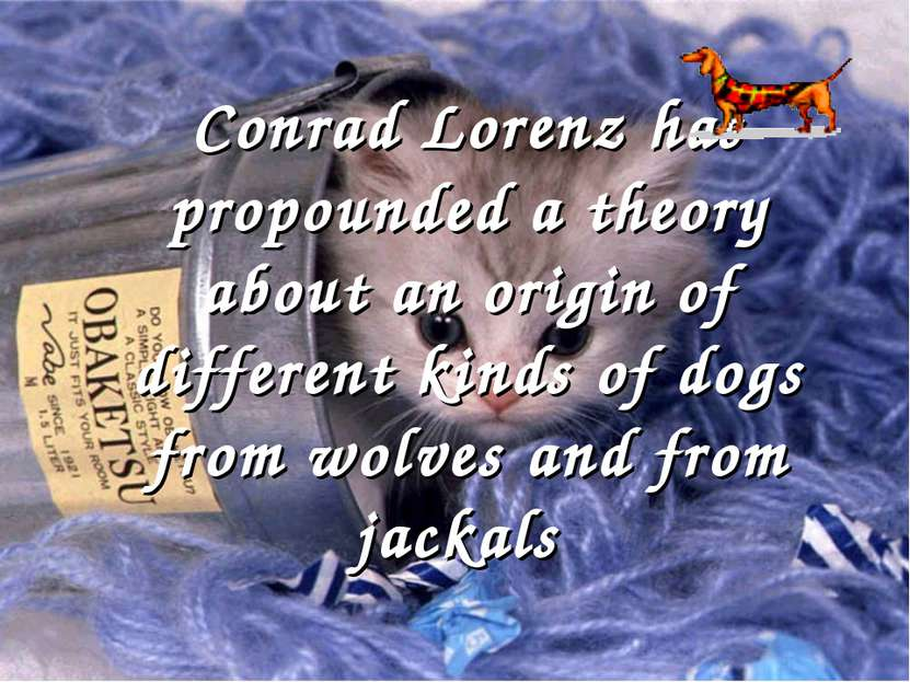 Conrad Lorenz has propounded a theory about an origin of different kinds of d...