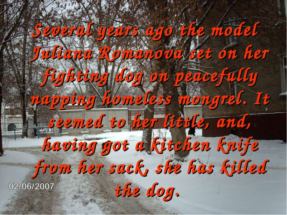 Several years ago the model Juliana Romanova set on her fighting dog on peace...