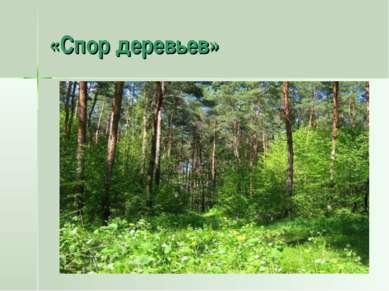 «Спор деревьев»
