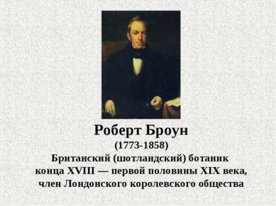 Роберт Броун (1773-1858) Британский (шотландский) ботаник конца XVIII— перво...