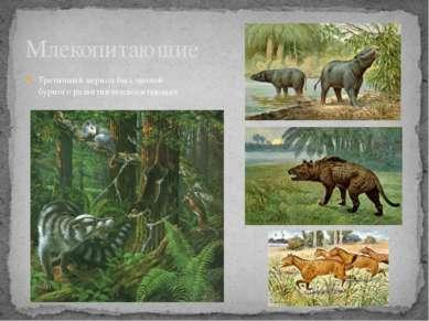 Третичный период был эпохой бурного развития млекопитающих Млекопитающие