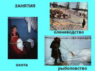 ЗАНЯТИЯ оленеводство охота рыболовство