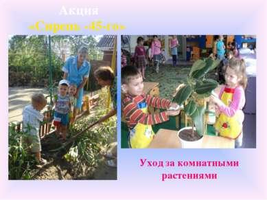 Уход за комнатными растениями Акция «Сирень -45-го»