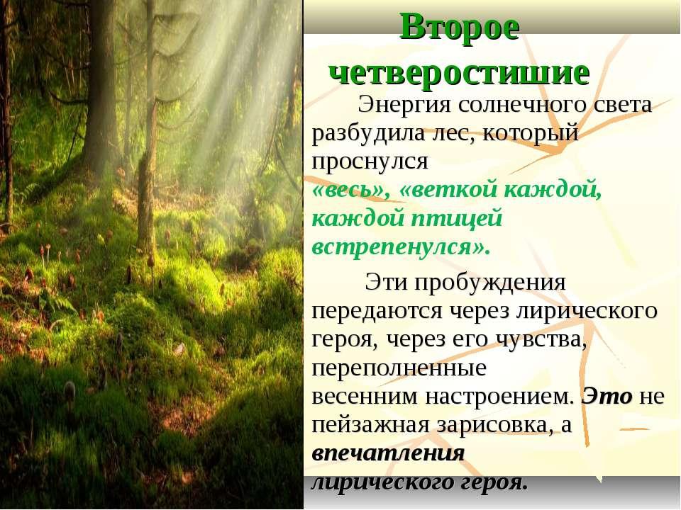 Второе четверостишие Энергия солнечного света разбудила лес, который проснулс...