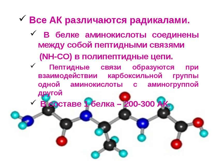 Все АК различаются радикалами. В белке аминокислоты соединены между собой пеп...
