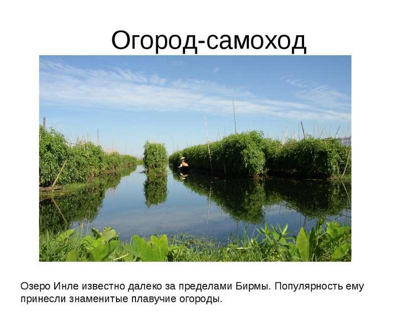 Огород-самоход Озеро Инле известно далеко за пределами Бирмы. Популярность ем...