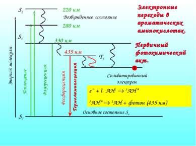 Электронные переходы в ароматических аминокислотах. e¯ + ●AH+ 3AH* 3AH* 1AH +...