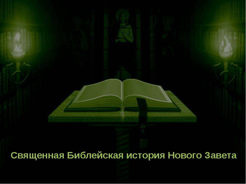 Священная Библейская история Нового Завета