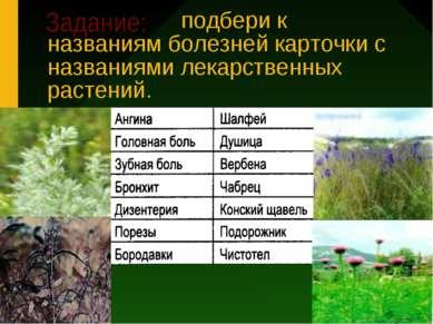 подбери к названиям болезней карточки с названиями лекарственных растений.