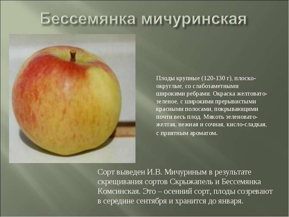 Сорт выведен И.В. Мичуриным в результате скрещивания сортов Скрыжапель и Бесс...