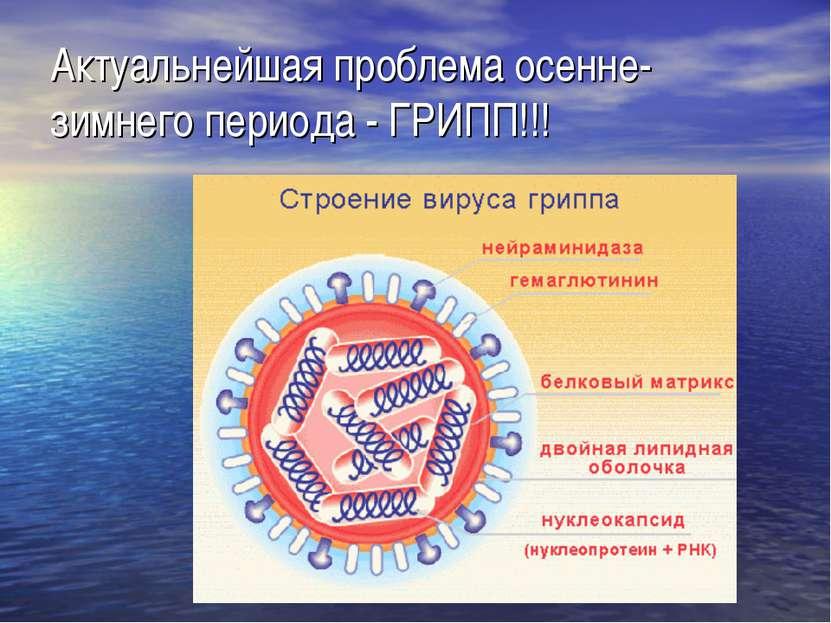 Актуальнейшая проблема осенне-зимнего периода - ГРИПП!!!