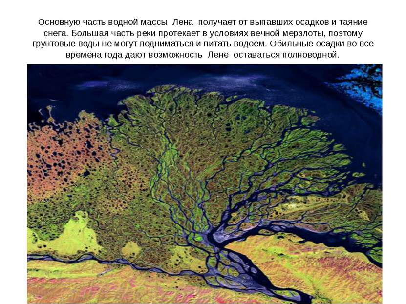 Основную часть водной массы Лена получает от выпавших осадков и таяние снег...