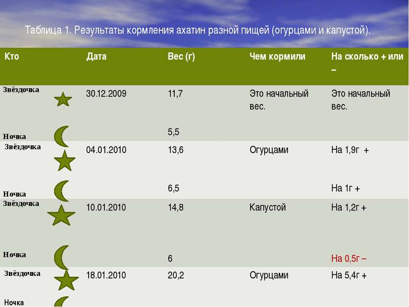 Таблица 1. Результаты кормления ахатин разной пищей (огурцами и капустой). Кт...