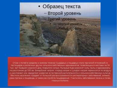 Стоки с полей в среднем и нижнем течении Сырдарьи и Амударьи стали причиной о...