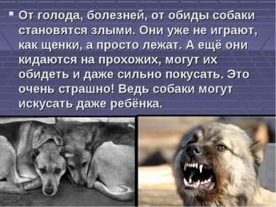 От голода, болезней, от обиды собаки становятся злыми. Они уже не играют, как...
