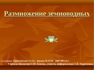 Размножение земноводных Екатерина Прилепская 11«А» школа №1216 2007/08 уч.г. ...