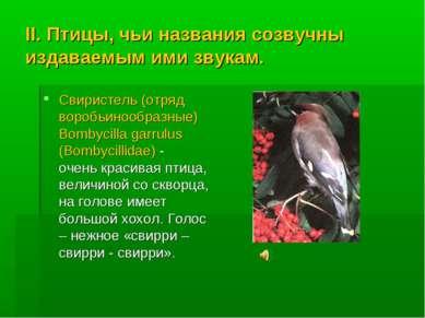 II. Птицы, чьи названия созвучны издаваемым ими звукам. Свиристель (отряд вор...