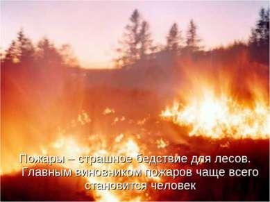 Пожары – страшное бедствие для лесов. Главным виновником пожаров чаще всего с...