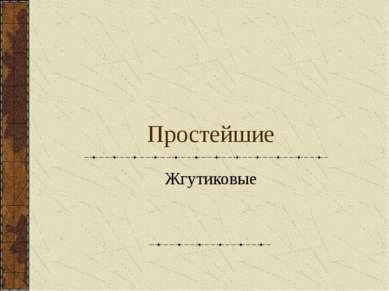 Простейшие Жгутиковые
